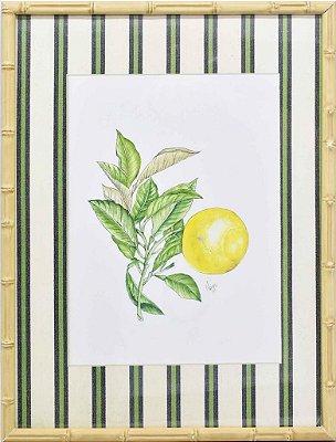 Quadro Limão Siciliano 1 Zanatta Casa
