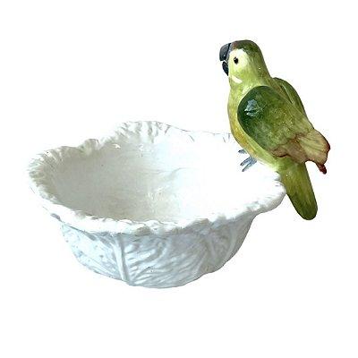 Saladeira de papagaio