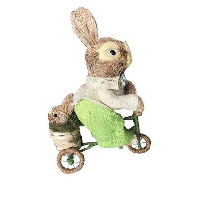 Coelho de Palha na Bicicleta