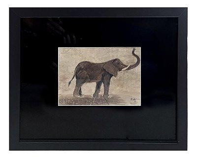 Quadro elefante horizontal