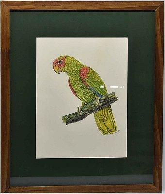 Quadro de Pássaro 5 com passpatour verde Zanatta Casa