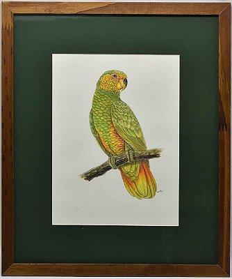 Quadro de pássaro 6 com passpatour verde