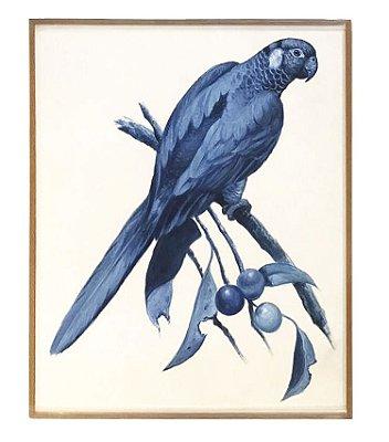 Quadro a óleo pássaro azul 5 Zanatta Casa