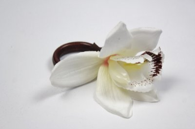 Porta Guardanapo Orquídea(4unidades)