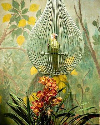 Lustre Gaiola com papagaio zanatta casa