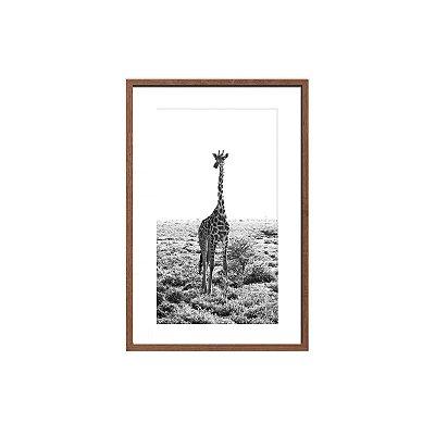 Quadro foto girafa preto e branco