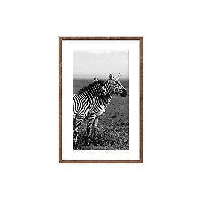Quadro foto zebras preto e branco 2
