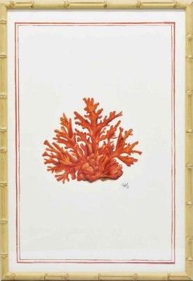 Quadro coral moldura faux bamboo 1