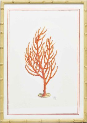 Quadro coral moldura faux bamboo 4