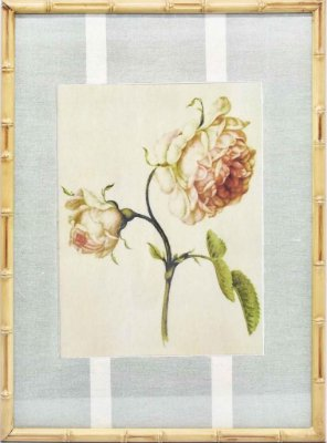Quadro gravura de rosas com moldura de faux bamboo fundo listra 2