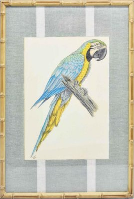 Quadro gravura pássaro com moldura de faux bamboo fundo listra 1