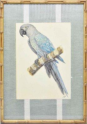 Quadro gravura pássaro com moldura de faux bamboo fundo listra 5