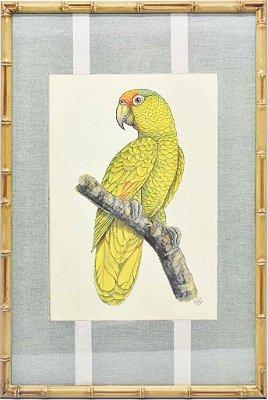 Quadro gravura pássaro com moldura de faux bamboo fundo listra 6