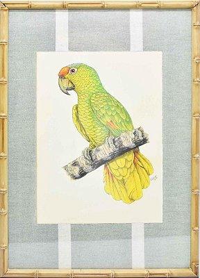 Quadro gravura pássaro com moldura de faux bamboo fundo listra 7