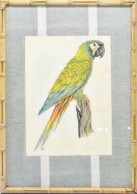 Quadro gravura pássaro com moldura de faux bamboo fundo listra 8