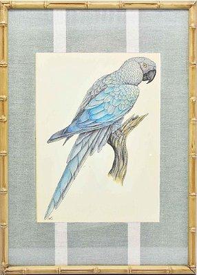Quadro gravura pássaro com moldura de faux bamboo fundo listra 9