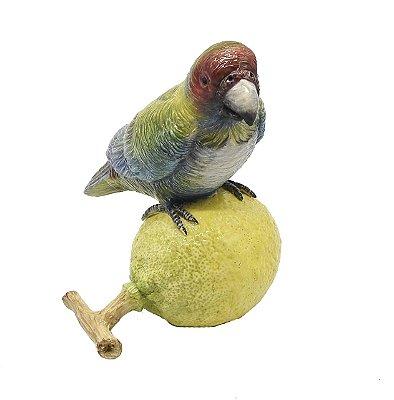 Papagaio com limão de cerâmica