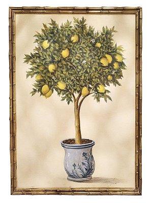 Quadro pintura a óleo limão siciliano topiaria 1