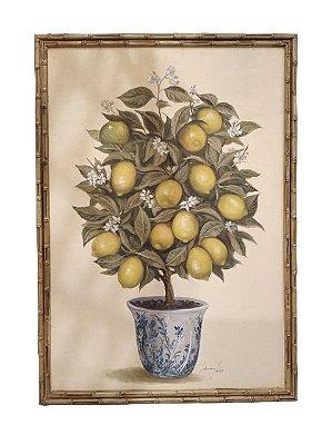 Quadro pintura a óleo limão siciliano topiaria 2