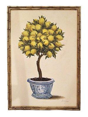 Quadro pintura a óleo limão siciliano topiaria 3