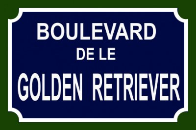 Placa Boulevard Golden Retriever