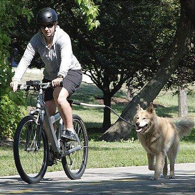 Kit para Bicicletas Cycleash para Cães