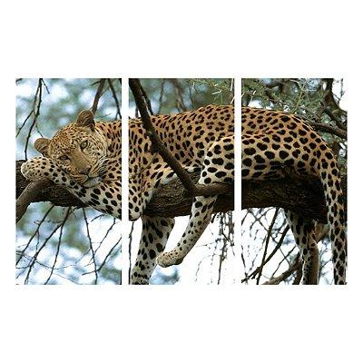 Leopardo - 3 peças