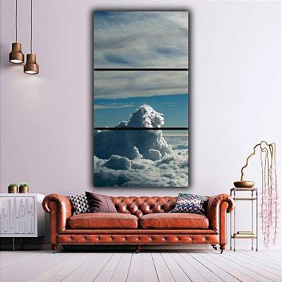 sky lion - 3 Canvas
