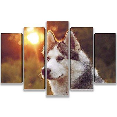 Wolf - 5 Telas Canvas