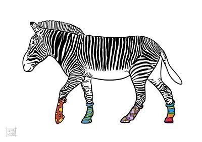 Zebra de Meias