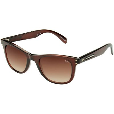 Óculos de Sol Jackdaw 24 Marrom Translúcido Brilho com Lentes Marrom Degradê
