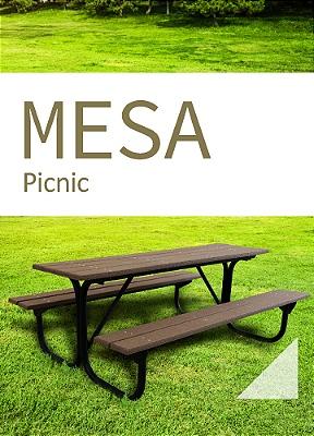 #18 Mesa Picnic
