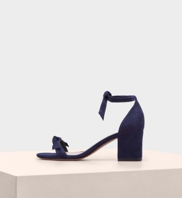 CLARITA BLOCK SUEDE NIGHT SHADE