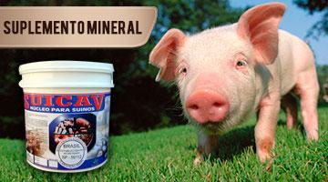 Suplemento Mineral para Suínos