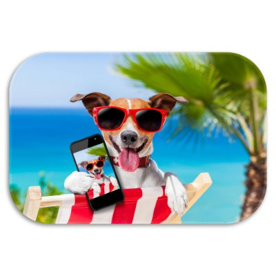 Tapete Decorativo Dog Summer 40cm X 60cm