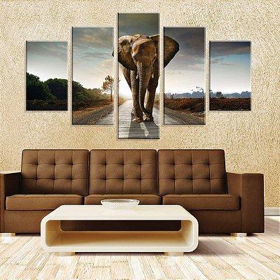 Conjunto de 5 Telas Decorativas em Canvas Elephant
