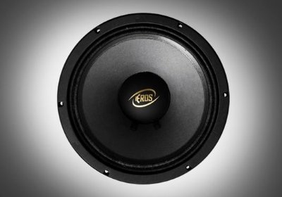 "ALTO FALANTE WOOFER 10"" EROS E-310 HIGH 300 RMS - 8 OHMS"