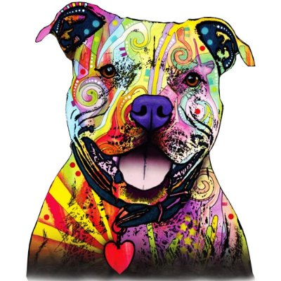 Camiseta Pitbull Colorido
