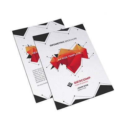 Flyer Panfleto - Formato 20x30 cm - Papel Couche 150gr - 4x4 Cores