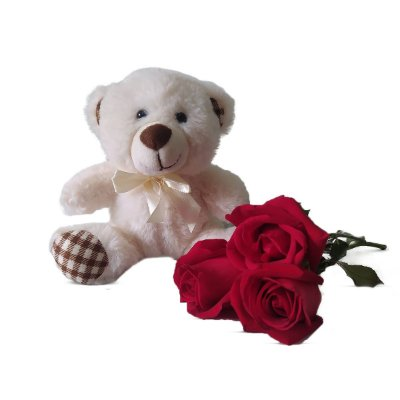 Urso de Pelúcia + Rosas Vermelhas