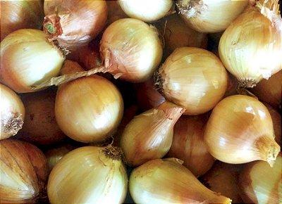 Cebola (kg) (média de 5/6 cebolas)
