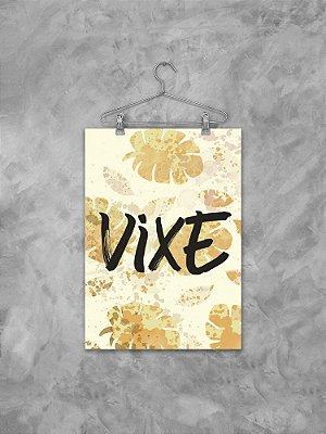 Poster Vixe