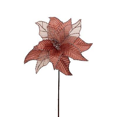 Poinsetia rosa antigo G200752