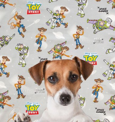 Capa Colchonete TOY STORY