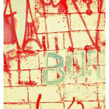Tela Street Art 1008