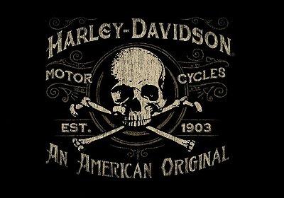 Jogo Americano Harley Skull-01 peça