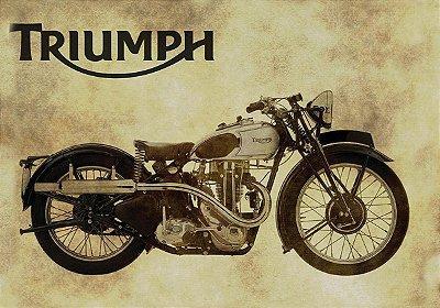 Jogo Americano Triumph- 02 Peças