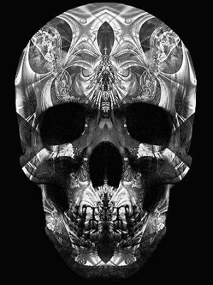 Poster Skull pb
