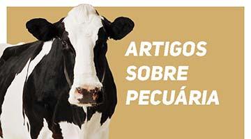 Blog Agrobrisa