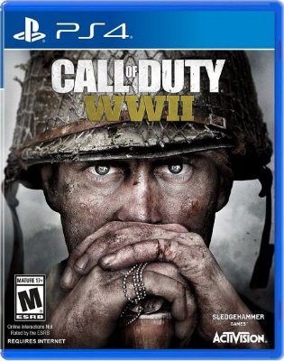 Call Of Duty World War 2 PS4 - Usado